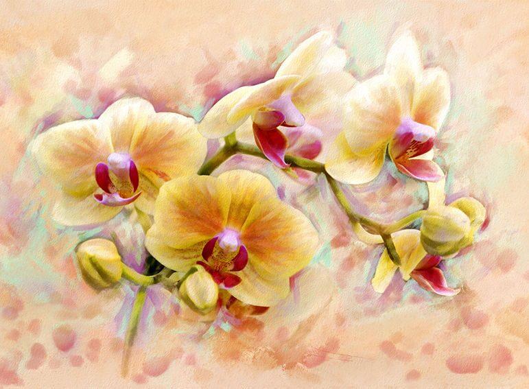 Картины с орхидеями нарисовать