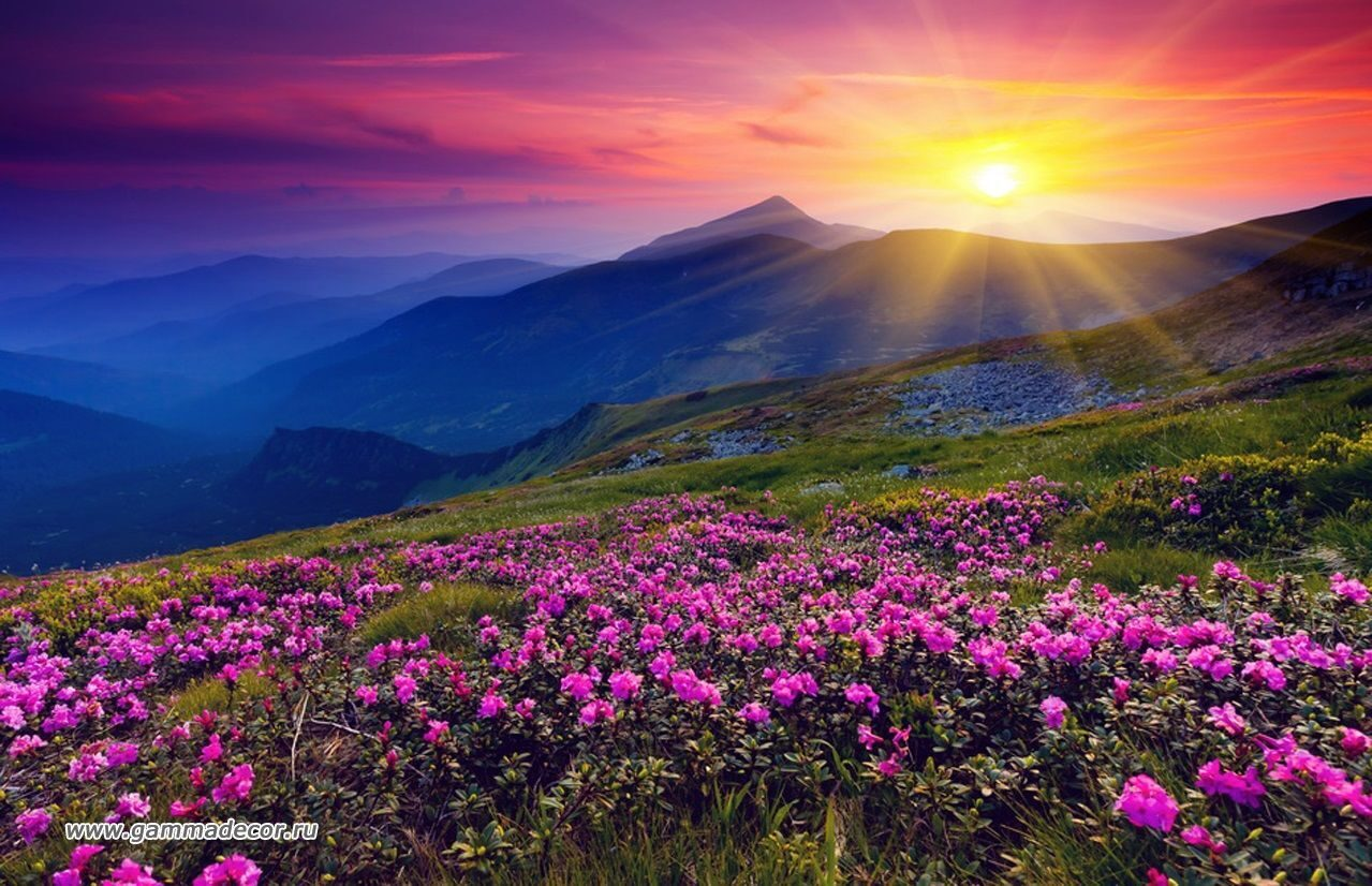фото о природе беларуси